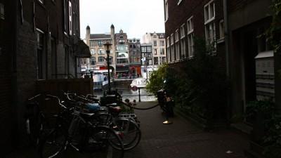 Amsterdam Greys